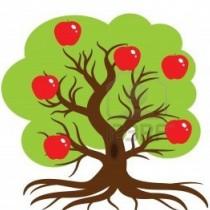 planter un arbre de réseau vente directe
